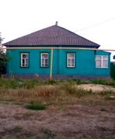 с. Копанище — Лискинский район